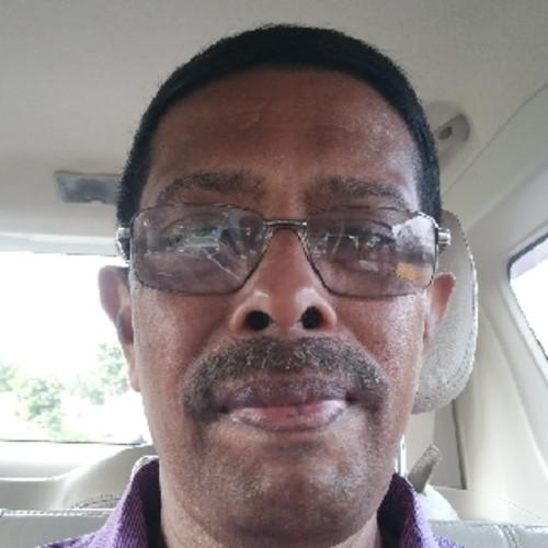 N. Venkata Subba Rao