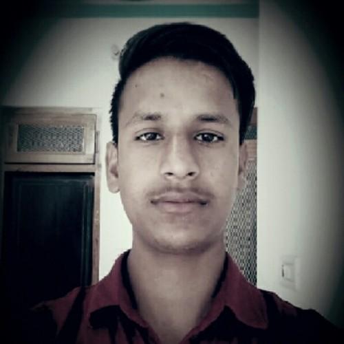 Ravi Mehndi Artist