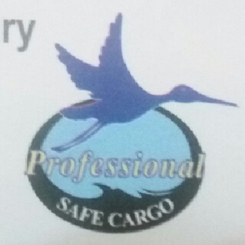 Professional Safe Cargo Movers