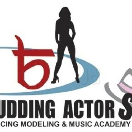 Budding Actors Dance & Music Academy