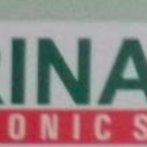 Thrinaina Electronic System