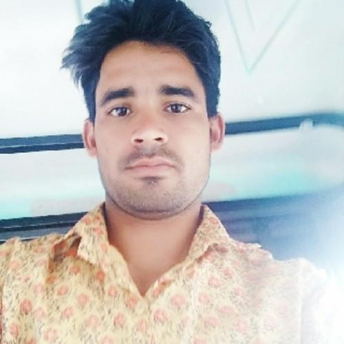 Raj Mehandi Artist