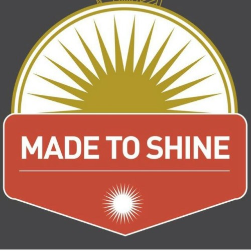 Made to Shine Cleaning & Technical LLC