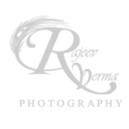 RV Fotography