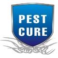 Ranjan Sapra - Pest control