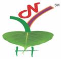 Dr. Akhilesh Kumar Singh - Yoga classes