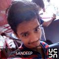Sandeep - Healthy tiffin service
