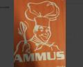 Ammus Hot 'n' Cool - Healthy tiffin service