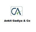 Ankit Gadiya - Ca small business