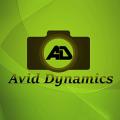 Avid Dynamics - Pre wedding shoot photographers