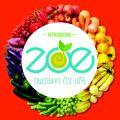 Taniya - Healthy tiffin service