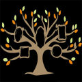 Photo Tree - Personal party photographers