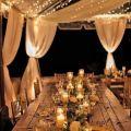 Divya Sharma - Wedding planner