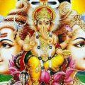 Pasupul Ganesh  - Cctv dealers