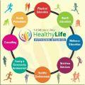 shahnawaz mediwala - Nutritionists