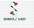Saroj Ved - Party makeup artist