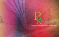 Prashanth Kanan - Wedding photographers