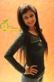 Dt. Sai Mahima