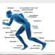 Advance Physiotherapy Clinic
