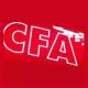 Chamber of Fine Arts ( CFA)