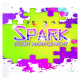 Spark Event & Wedding Planners
