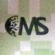 M S Technologies