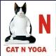 CAT N YOGA