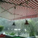 Vintec awnings and canopies