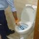 Tvishi cleaners Gurgaon