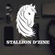 Stallion D'zine