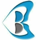 Belthink Business Consulting Pvt Ltd