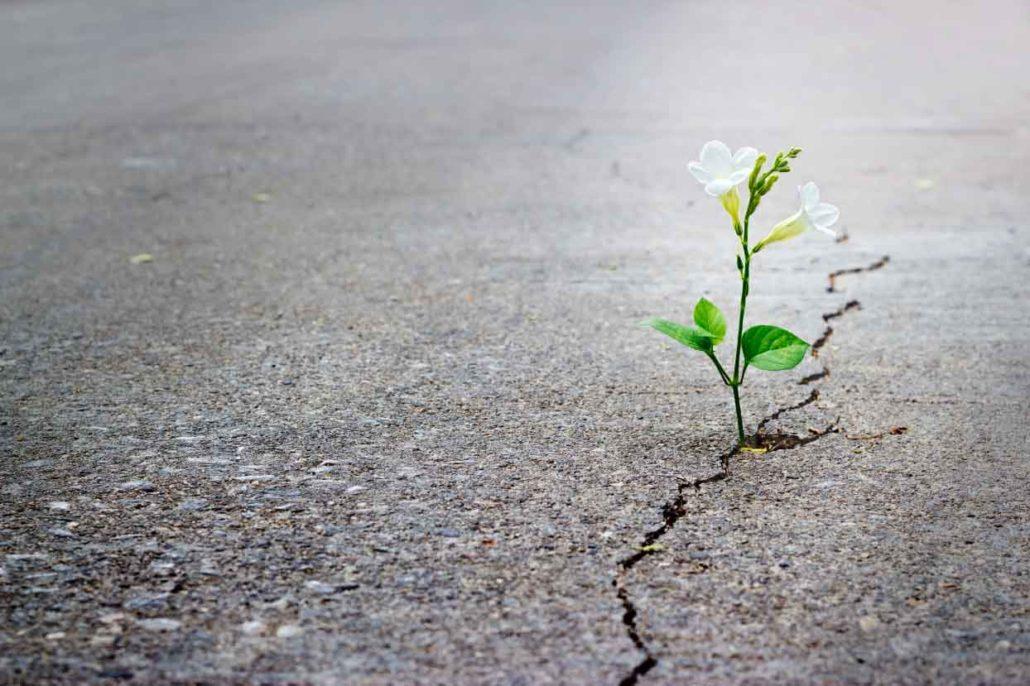 2016_hope-1030x686_ckg0bd Kisah Inspiratif-Nilai Kehidupan Cerita Inspirasi Cerita Motivasi Cerpen