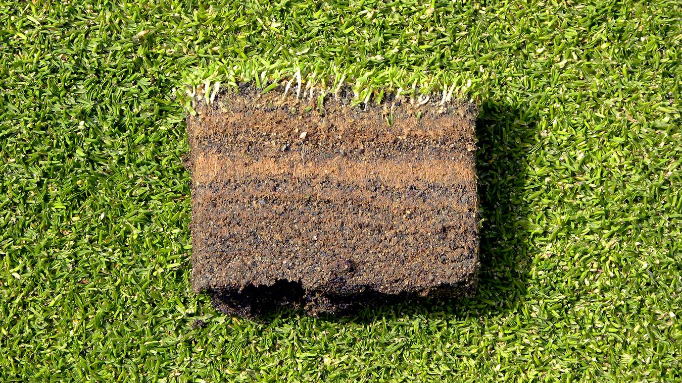 Why Is Sand Applied To Putting Greens?