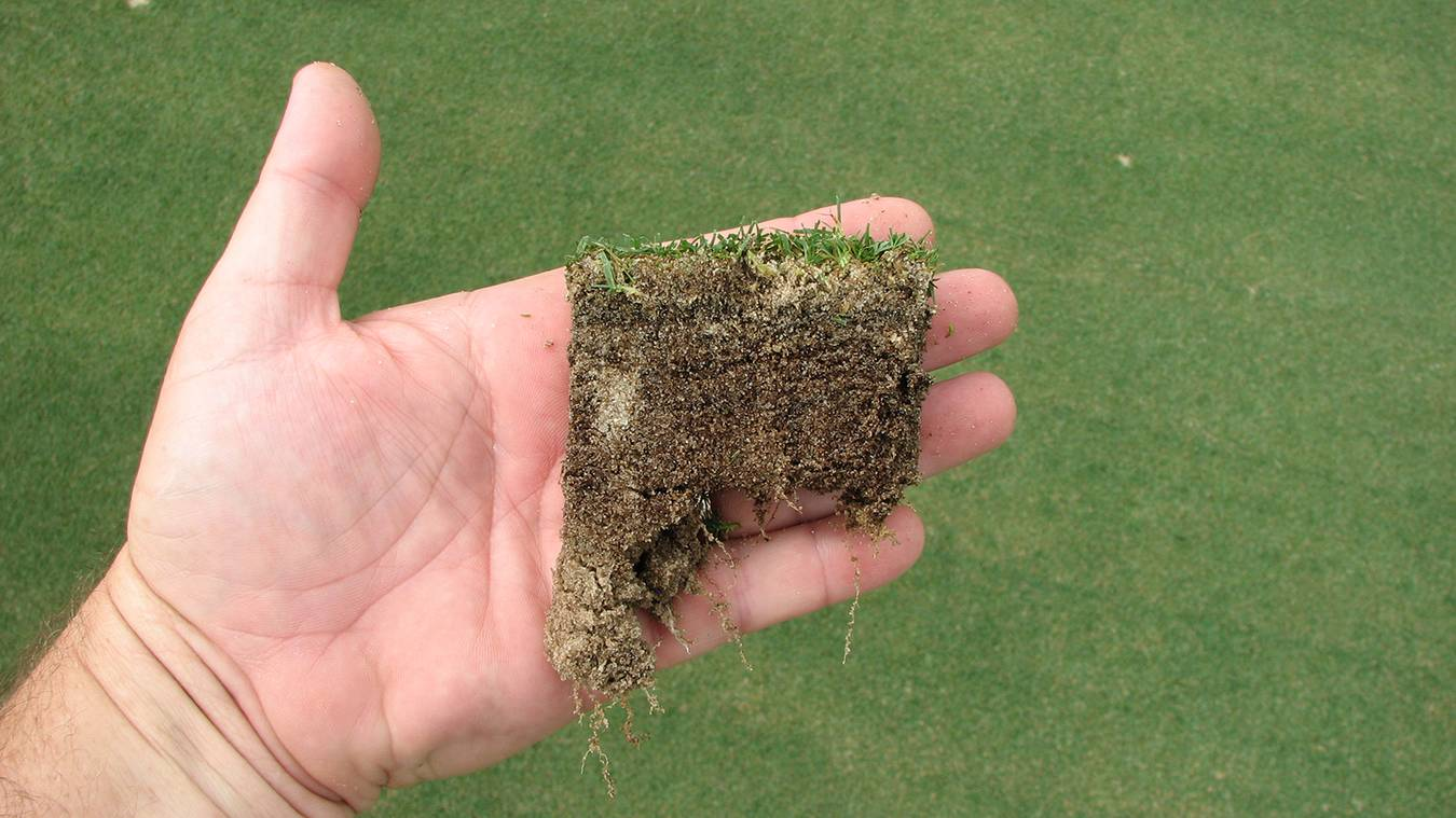 Golf Courses: Living Bio Filters