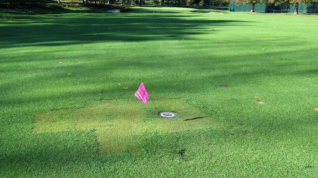 best sprinkler heads 2020 Leveling Irrigation Heads Improves Playing Conditions