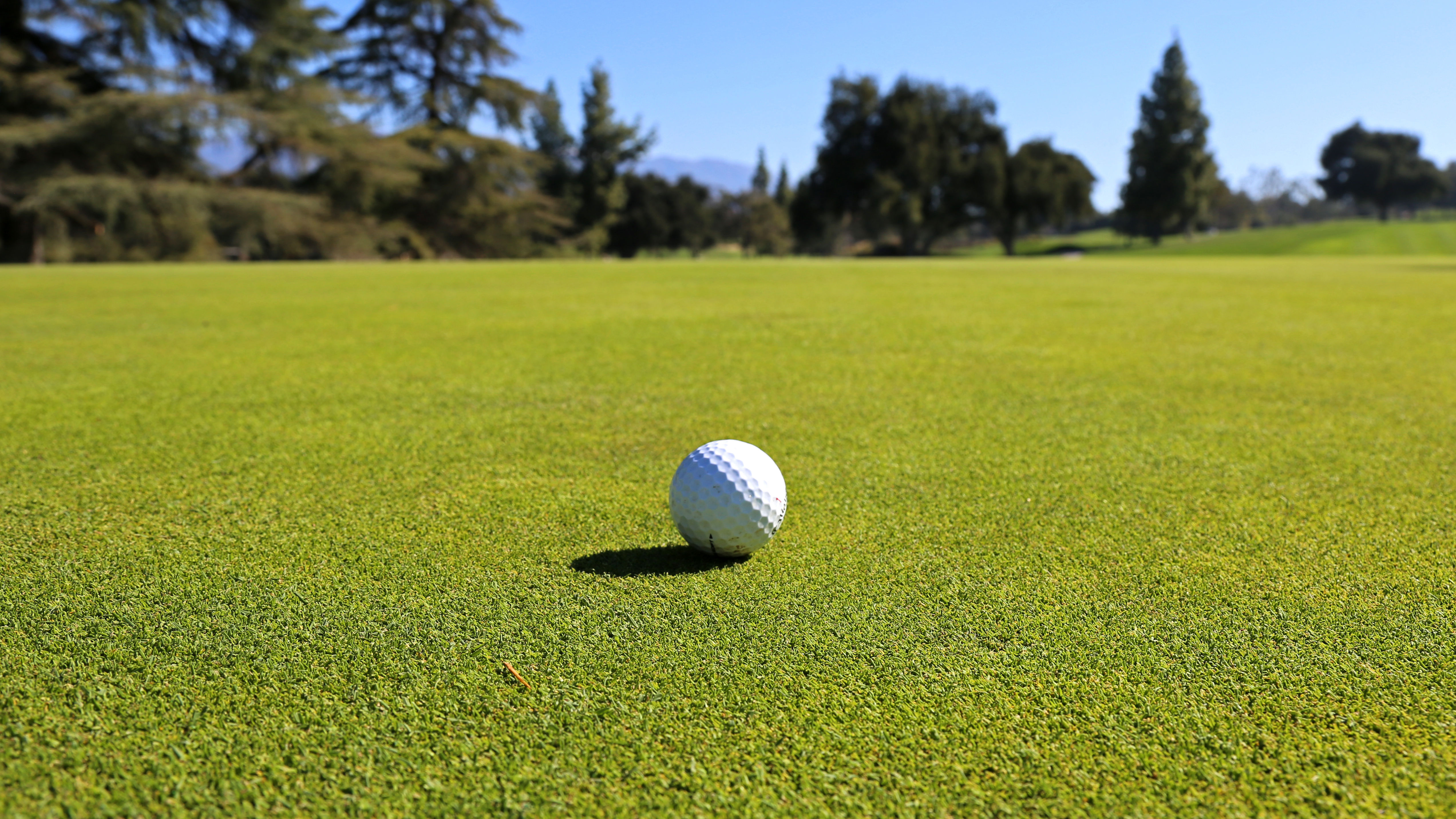 The Ins and Outs of Managing Poa Annua Putting Greens