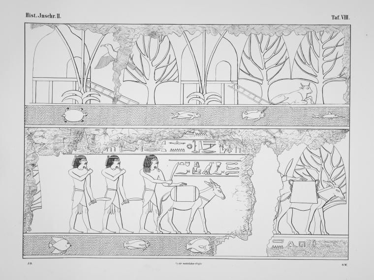Benarkah Bengkulu Tanah Punt? Spt Cerita Kuil Hatshepsut 1