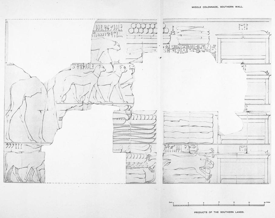 Benarkah Bengkulu Tanah Punt? Spt Cerita Kuil Hatshepsut 3
