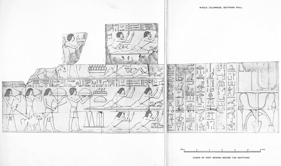 Benarkah Bengkulu Tanah Punt? Spt Cerita Kuil Hatshepsut 7