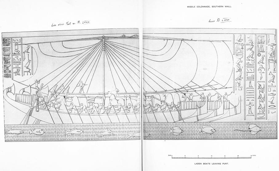 Benarkah Bengkulu Tanah Punt? Spt Cerita Kuil Hatshepsut 8