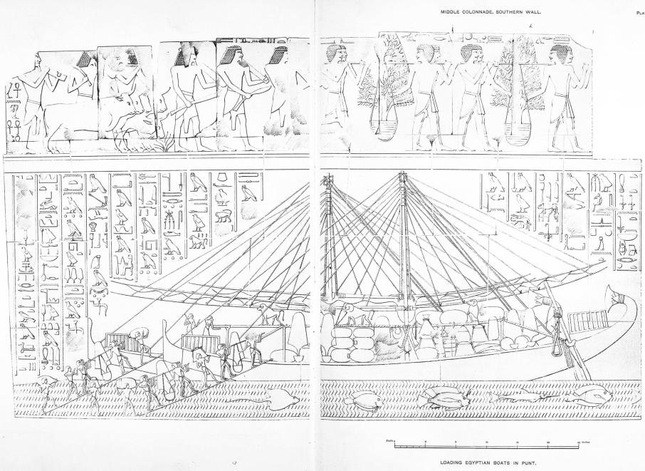 Benarkah Bengkulu Tanah Punt? Spt Cerita Kuil Hatshepsut 9