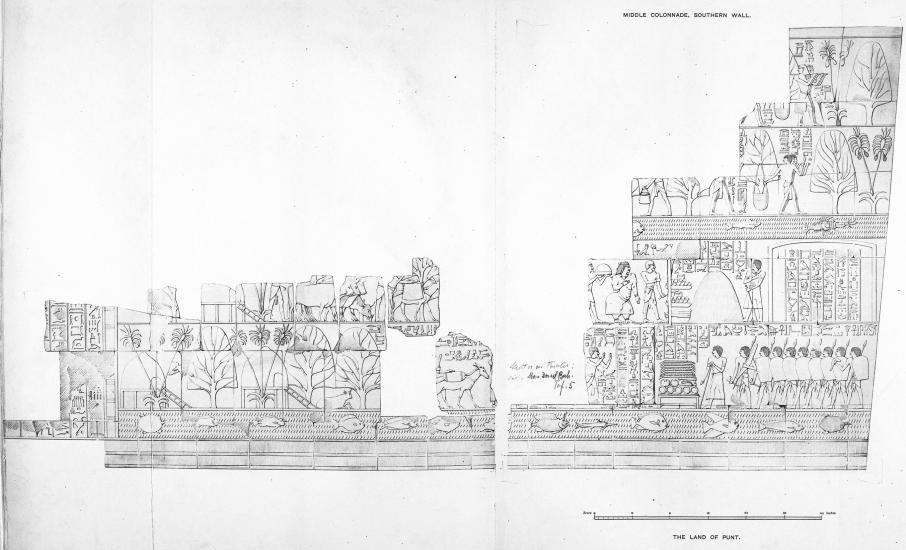 Benarkah Bengkulu Tanah Punt? Spt Cerita Kuil Hatshepsut 10