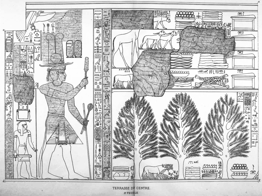 Benarkah Bengkulu Tanah Punt? Spt Cerita Kuil Hatshepsut 15