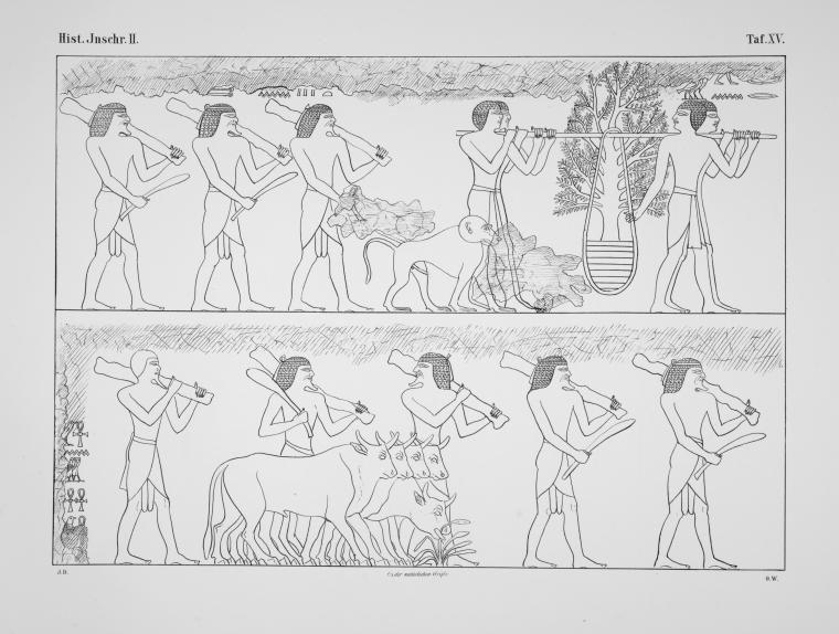 Benarkah Bengkulu Tanah Punt? Spt Cerita Kuil Hatshepsut 20
