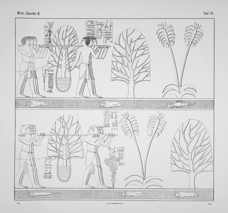 Benarkah Bengkulu Tanah Punt? Spt Cerita Kuil Hatshepsut 26