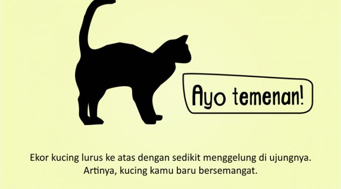 Kenali Suasana Hati Kucing dari Gerak Ekornya 7