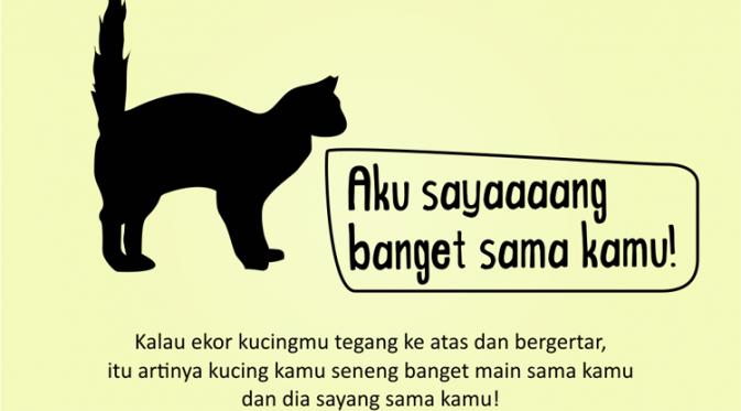 Kenali Suasana Hati Kucing dari Gerak Ekornya 1