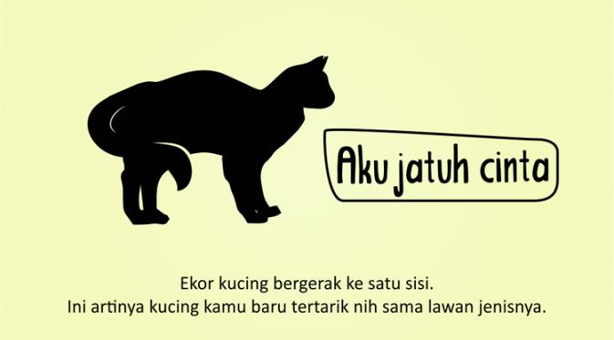 Kenali Suasana Hati Kucing dari Gerak Ekornya 6