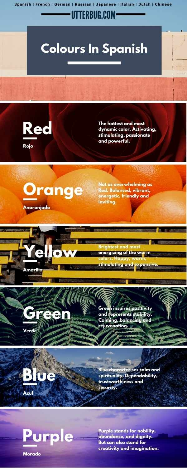 Infographics of Colours In Spanish