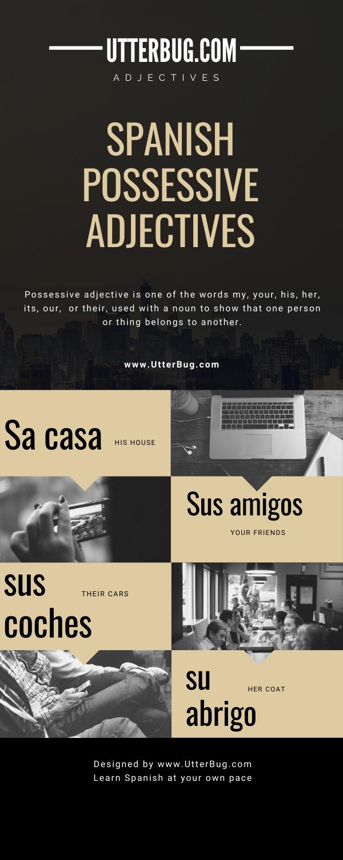 Infographics of Spanish Possessive Adjectives